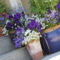 Gardening 101 ~ How does your garden grow?