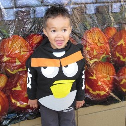 Angry Bird Sightings {VI} Featuring YOUR Angry Birds…