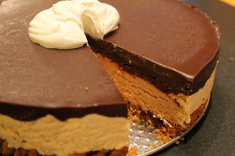 Chocolate Pumpkin Mousse Cake » Dragonfly Designs