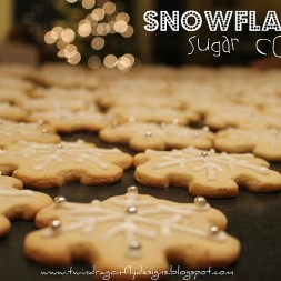 RAK Kids ~ Snowflake Sugar Cookies