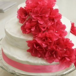 Raspberry-white-choclate-ganache-wedding-cake-02
