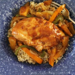 Pinspired Recipes ~ Crock Pot Hawaiian Chicken