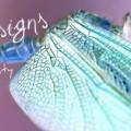 dragonflya9801