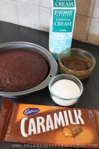 Caramilk Cake (2)