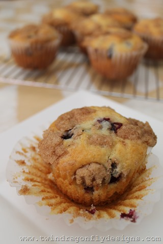 Saskatoon Berry Muffins (11)