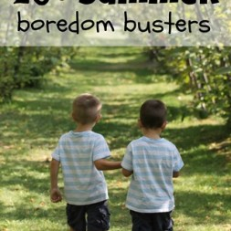 20+ Summer Boredom Busters