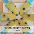 Banana Blueberry Popsicles_thumb[1]
