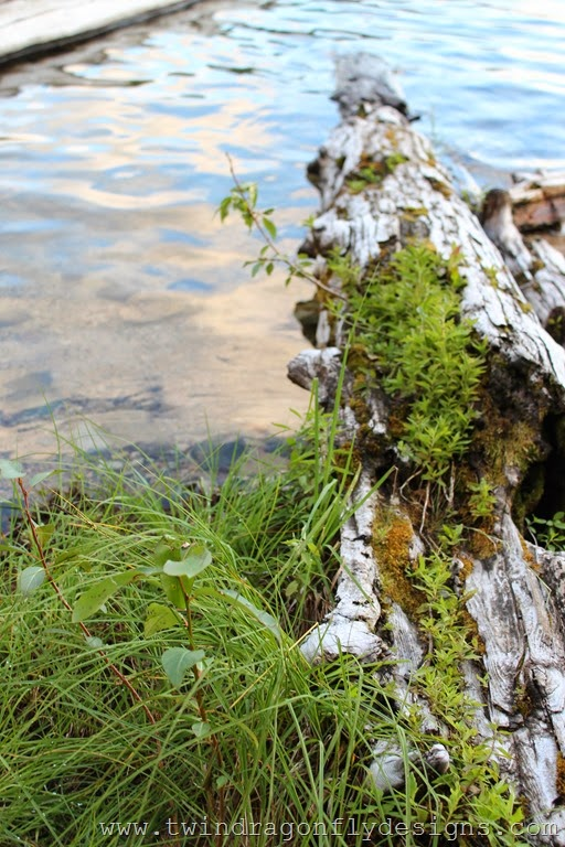 Conkle Lake (7)_thumb