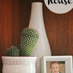 Shop your house_thumb