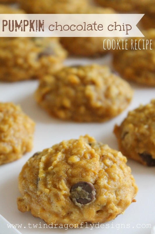 Chocolate Chip Oatmeal Pumpkin Cookie Recipe