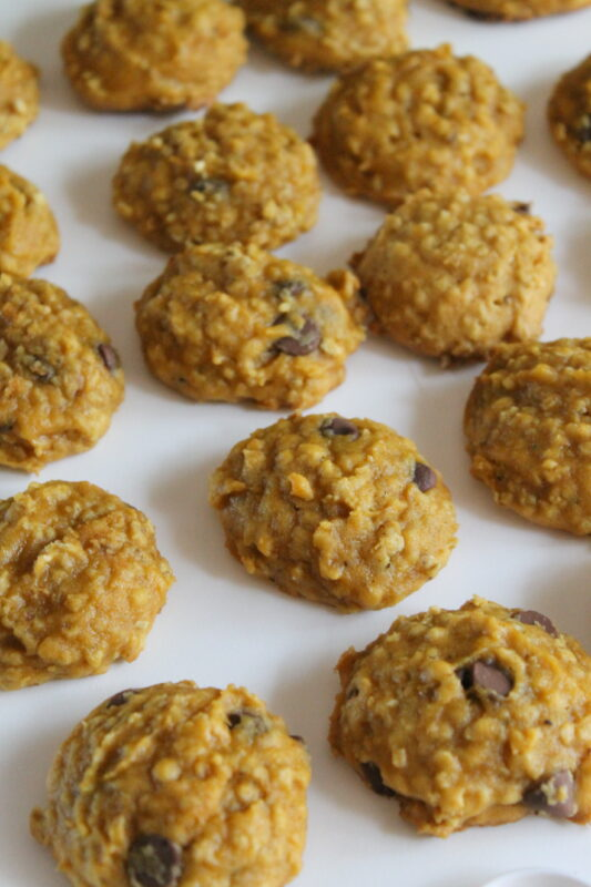 Chocolate Chip Oatmeal Pumpkin Cookies