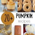 20+ Pumpkin Recipes