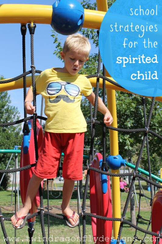 School Strategies for the Spirited Child