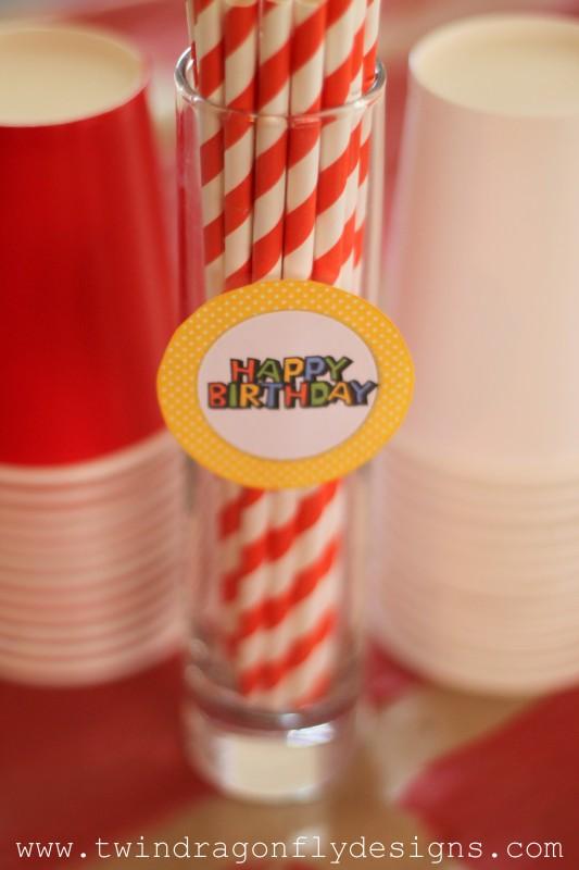Super Mario Birthday Party-028