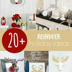20+ Reindeer Holiday Ideas