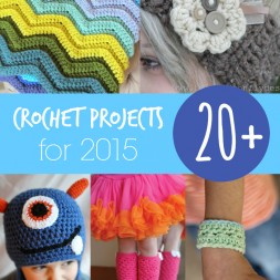 20+ Crochet Projects