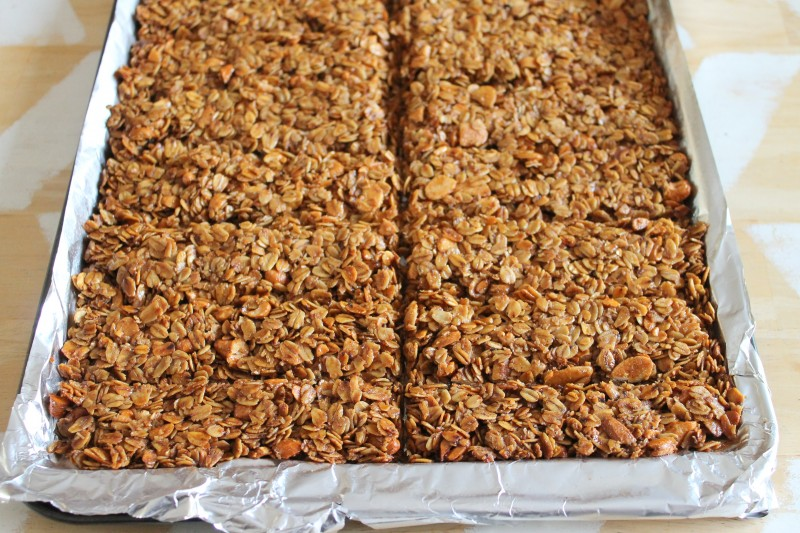 Crunchy Granola Bar Recipe » Dragonfly Designs