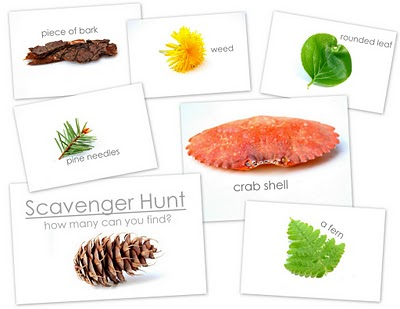 20+ Nature Scavenger Hunt Ideas