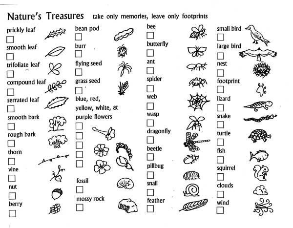 image about Printable Nature Scavenger Hunt called 20+ Mother nature Scavenger Hunt Plans