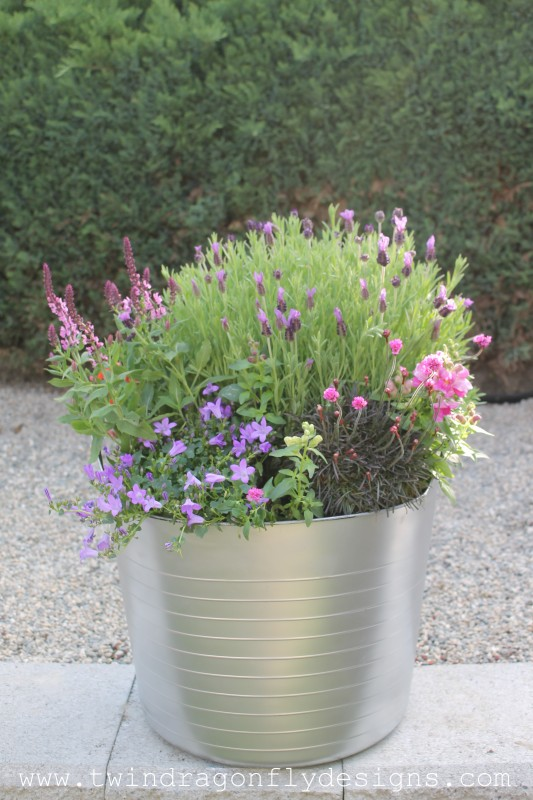Create a Bee Friendly Planter