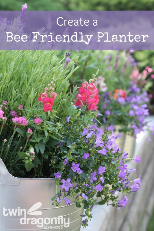 Create a Bee Friendly Planter