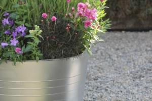 DIY Plastic Bucket Planter