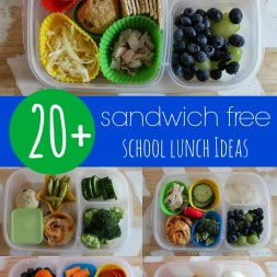 20+ Sandwich Free Lunch Ideas
