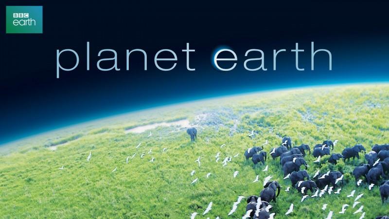 22220753 - planet earth