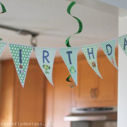Plants vs Zombies Birthday Party-004