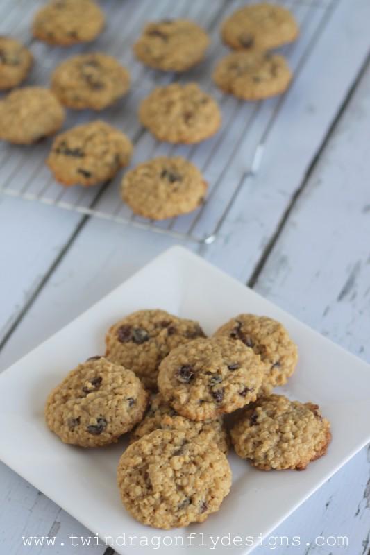 Oatmeal Raisin Cookies-001