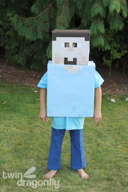 Minecraft Steve and Enderman Costumes