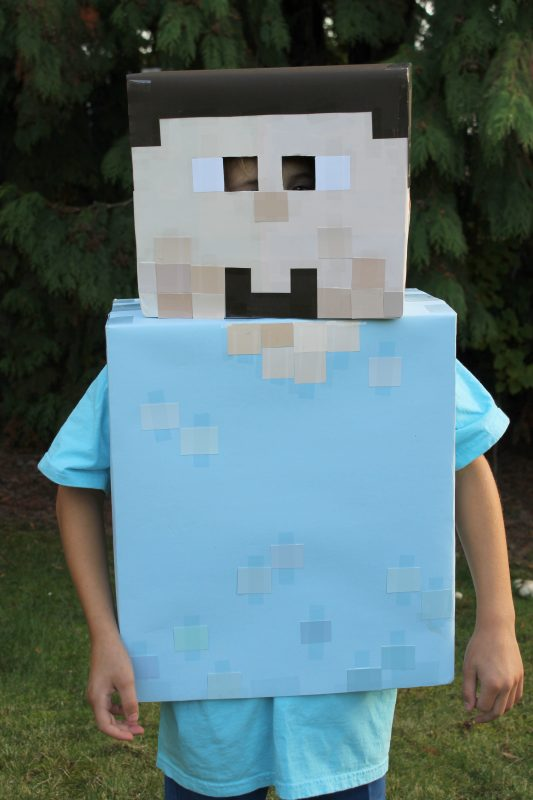 Minecraft Steve And Enderman Costumes Dragonfly Designs
