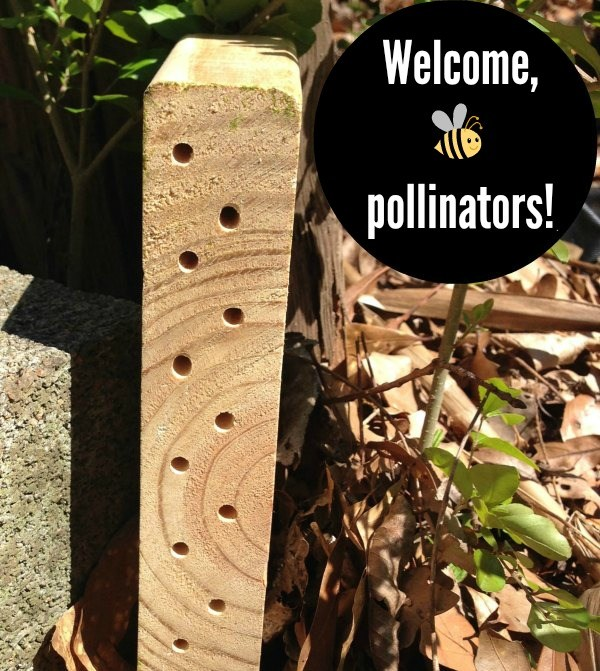 Build-a-Bee-Habitat-from-Scrap-Wood-3.39.32-PM