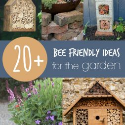 20+ Bee Friendly Ideas for the Garden