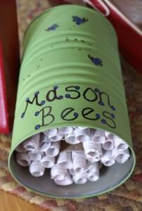 mason-bee-house-202x300