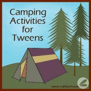 20+ Camping Ideas & Tips