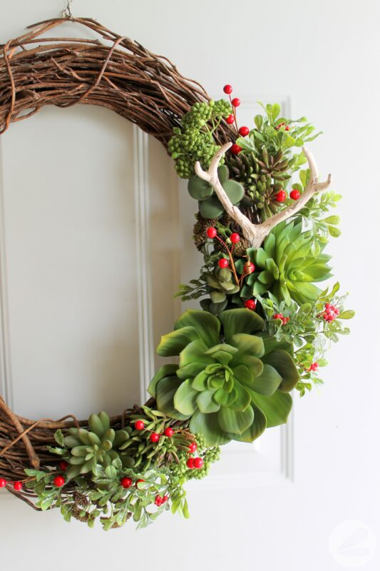 A Succulent Wreath for Christmas