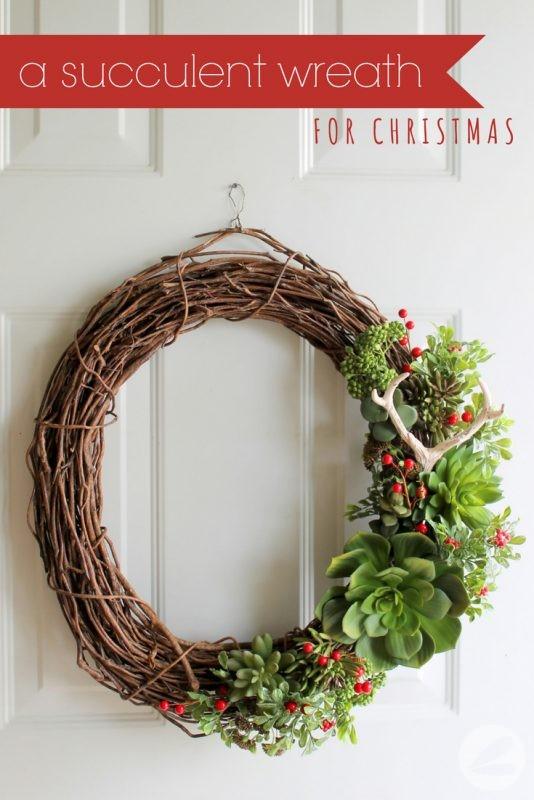 A Succulent Wreath for Christmas