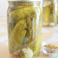 Easy Dill Pickle Recipe