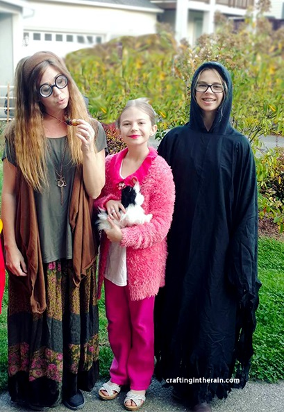 Dementor Costume, Trelawney Costume and Umbridge Costume