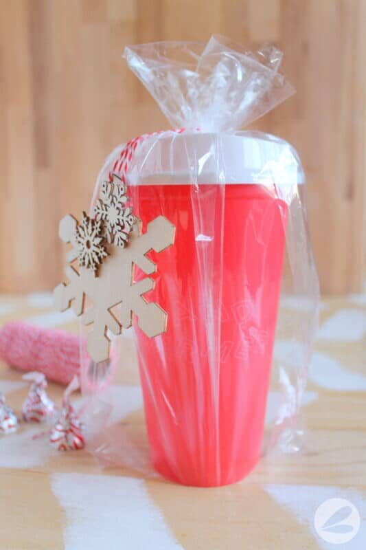 starbucks cup gift idea