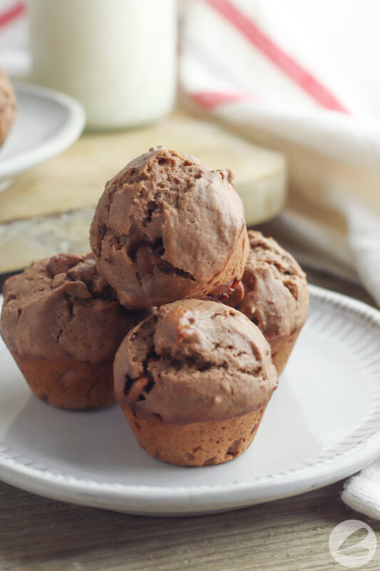 double chocolate chip muffin recipe