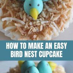 how to make easy bird nest cupcakes