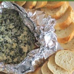 campfire spinach dip recipe
